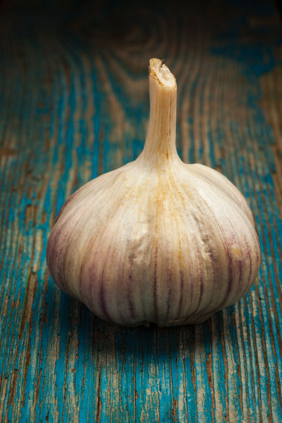 Coronary Calcium Score Benefits of Aged Garlic