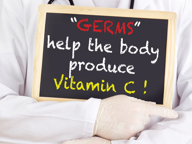 "Amazing Discovery: ""Germs"" Enable Us To Produce Vitamin C"