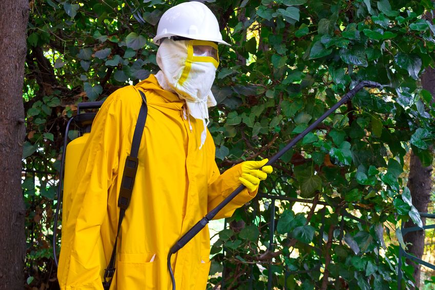 Roundup Herbicide: 'The Most Toxic Chemical In the Environment'