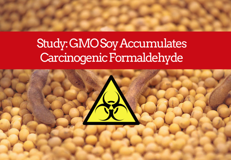 GMO Soy Accumulates Carcinogenic Formaldehyde & Disrupts Plant Metabolism, Suggests Study