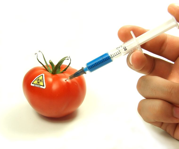 Connecting the Dots: GMOs and Vaccines