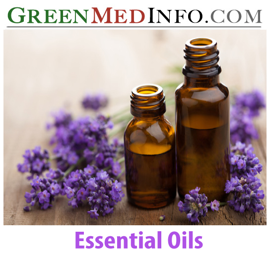 Essential Oils for Controlling Insect Pests