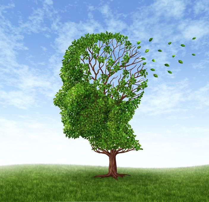 Which Antioxidants Protect Against Alzheimer's Disease?