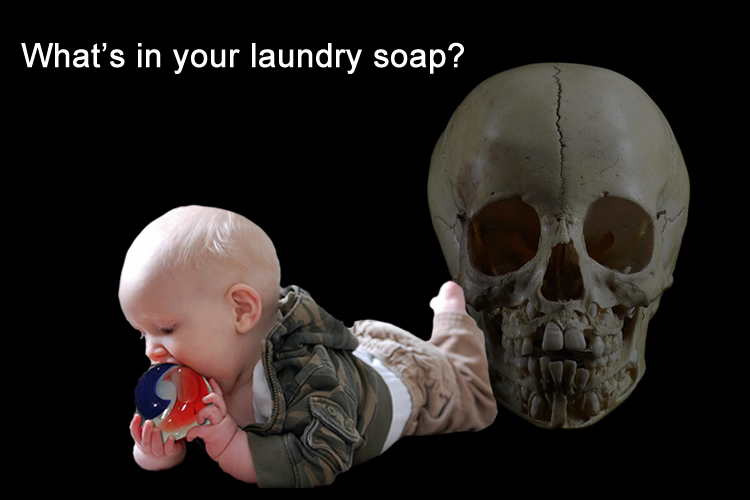 Toxic Detergents vs Soap Nuts A Laundry Soap You Can Eat