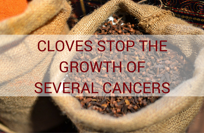 Cloves Stop the Growth of Several Cancers