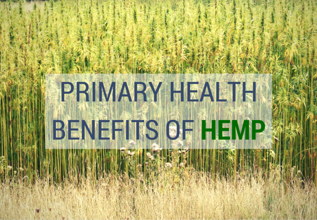 Primary Health Benefits of Hemp