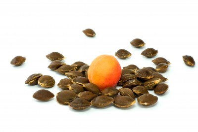 Apricot Kernels and Bitter Almonds Display Promising Effects
