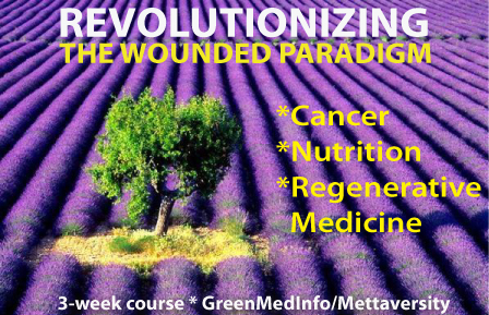 Revolutionizing The Wounded Paradigm