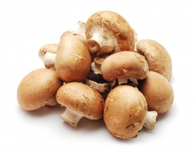 Beginner's Guide to Edible Mushrooms as Medicine