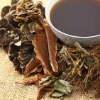 Nonalcoholic Fatty Liver Disease Successfully Treated with Chinese Herbs
