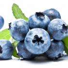 Wild Blueberry Polyphenols Improve Vascular Function