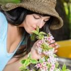Evidence-Based Aromatherapy: Stress Relief And Much More