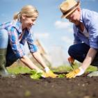Health Benefits of Garden Therapy