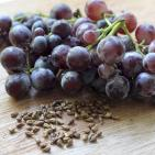 Grape Seed Extract Superior To Blockbuster Diabetes Drug, Preclinical Study Finds