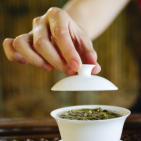 Green Tea Changes Estrogen Metabolism and Breast Cancer Risk