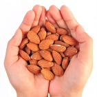 A Daily Handful of Nuts Linked to 20% Lower Death Risk