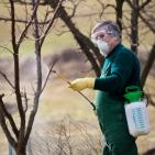Herbicide and Pesticide Exposure Linked to Parkinson's Disease