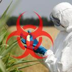 How Roundup Weedkiller Can Promote Cancer, New Study Reveals