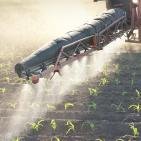 "How ""Extreme Levels"" of Roundup in Food Became the Industry Normal"
