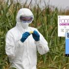 New GMO Studies Demonstrate 'Substantial Non-Equivalence'