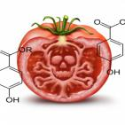 Carcinogenic Parabens Contaminating U.S. Food Supply