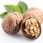 Walnuts Increase Male Sperm Counts and Fertility