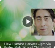 How Humans Harvest Light via Water, Melanin and Chlorophyll