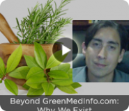 Beyond GreenMedInfo.com: Why We Exist