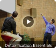 Detoxification Essentials - Weekly Member Exclusive Video