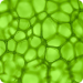 Groundbreaking Discovery: Animal Cells Powered by Sunlight/Chlorophyll