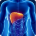 HepB Vaccine Causes Liver Disease: Science Shows How