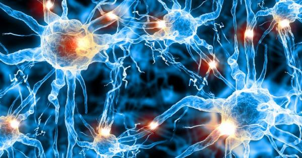 Psychobiotics: Bacteria For Your Brain?