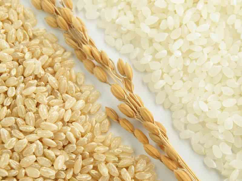 Is Brown Rice Really Better than White Rice?