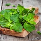The Power of Peppermint: 15 Health Benefits Revealed